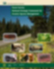 Forest Service National Strategic Framework for Invasive Species