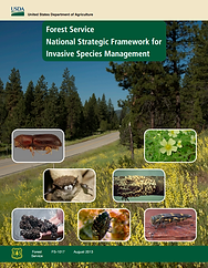 Forest Service National Strategic Framework for Invasive Species