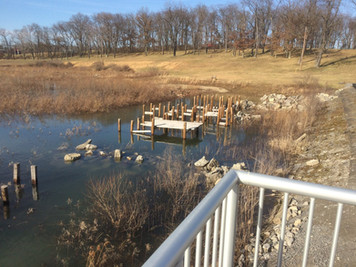 These underwater structures provide habitat and hiding spaces for the lake's growing fish population.  Photo date: February 19, 2017