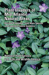 Plant Invaders of Mid-Atlantic Natural Areas, 4th Edition
