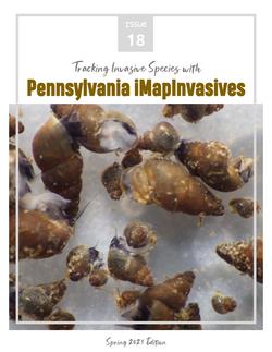 Pennsylvania iMapInvasives newsletter (Issue 18, Spring 2021)