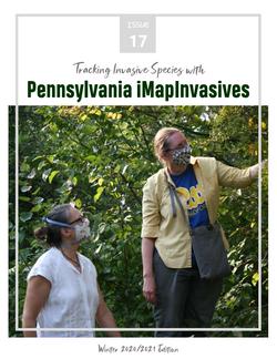 Pennsylvania iMapInvasives newsletter (Issue 17, Winter 2020/2021)