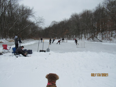 Photo date: February 13, 2021 Photo courtesy of Dave Fowler, GRLC board member