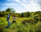 Pennsylvania iMapInvasives, mission, managing invasive species, invasive species management