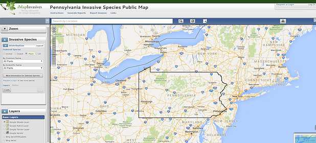 View generated reports, Pennsylvania iMapInvasives, invasive species