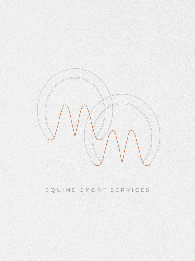 MM equine sport services