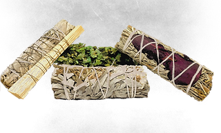 Four different types of sage. white sage with Palo Santo, blue sage with red rose petals, sinuata.