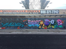 __radhabits _perishtnr _burnsalive _slokeone #feirs#perish#fausto#faust#sloke#graff#graffiti#graffpo