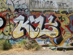IMG_4229