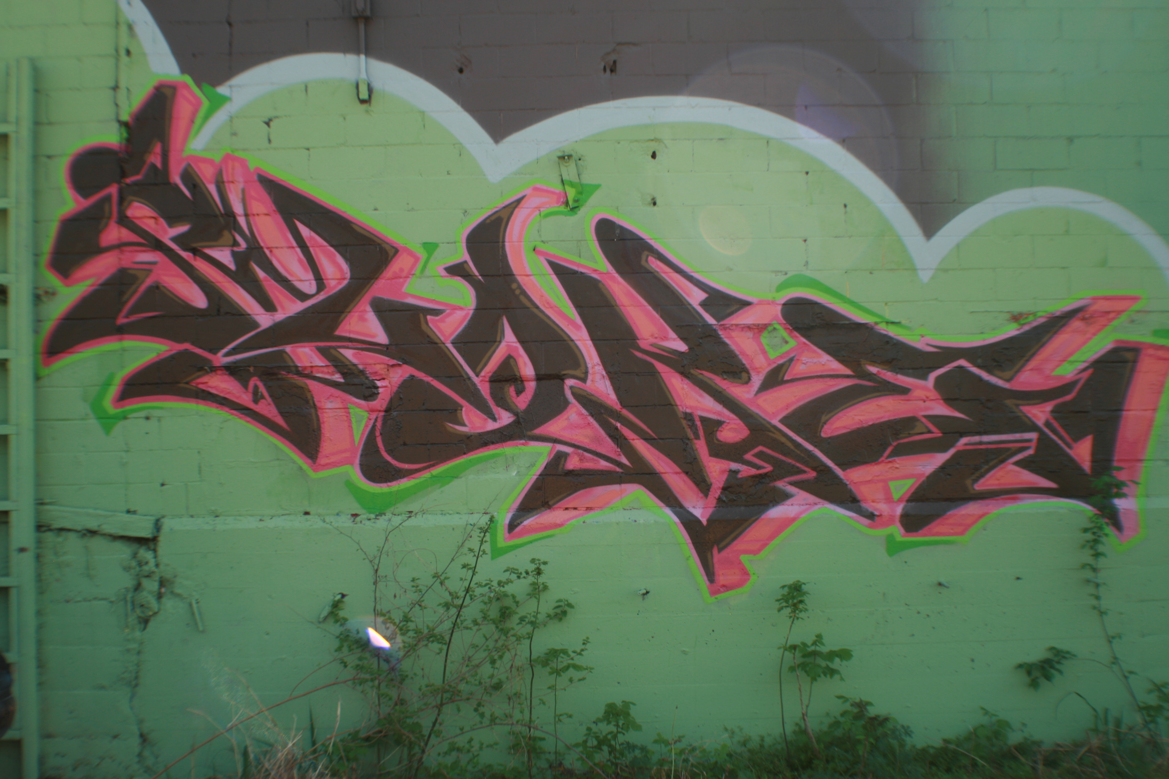 IMG_2758