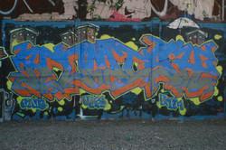 IMG_6922