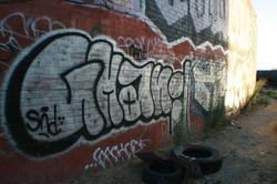 IMG_6543