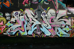 IMG_7861