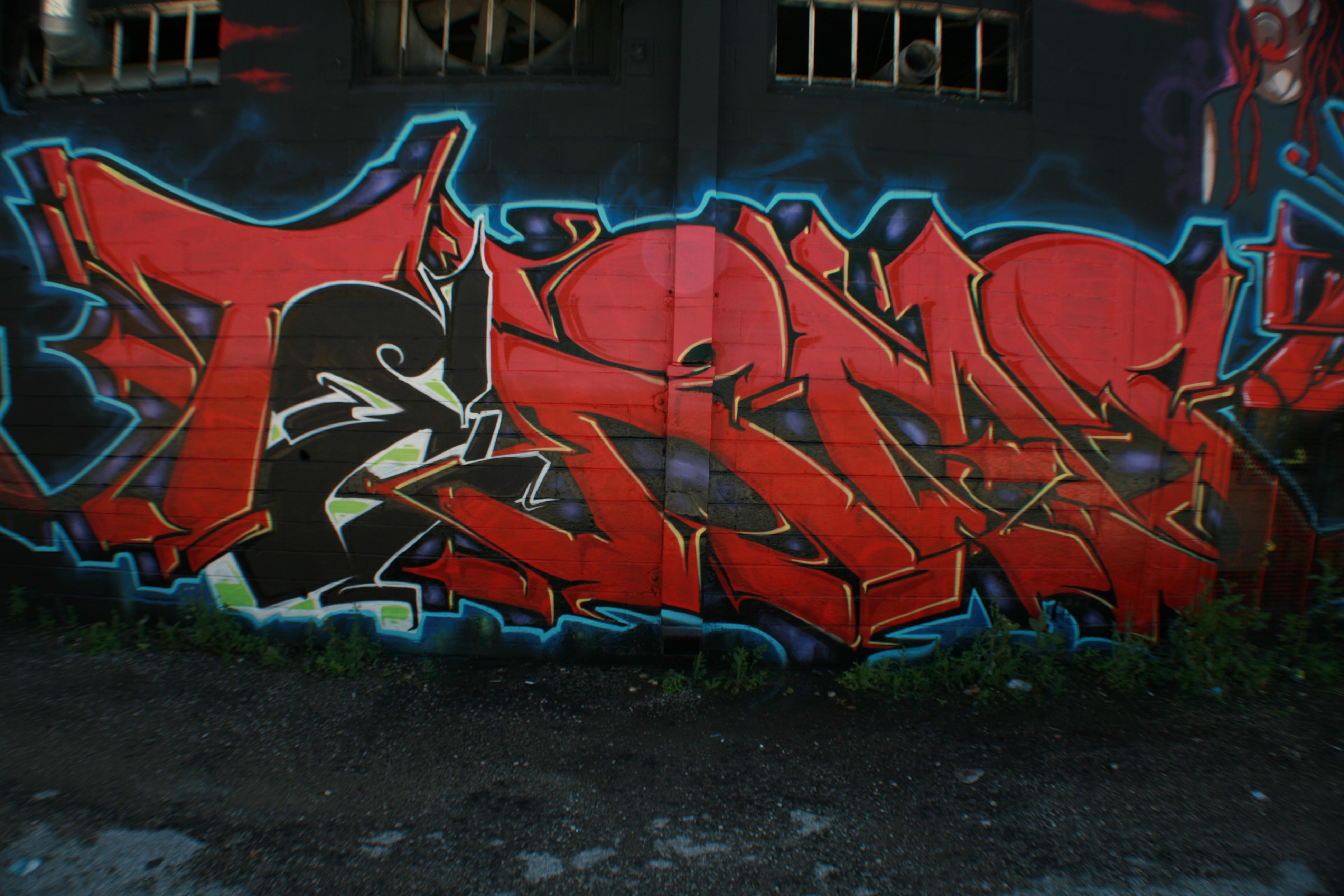 IMG_0542