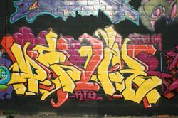 IMG_7872