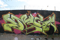 IMG_7371