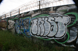 IMG_5115