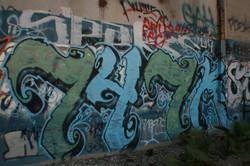 IMG_6607