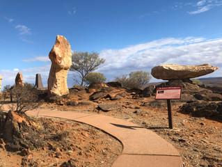 Day 37 Week 6 Sculptures & The Living Desert Broken Hill