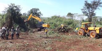 Imagem de intervenção ambiental através do DAIA