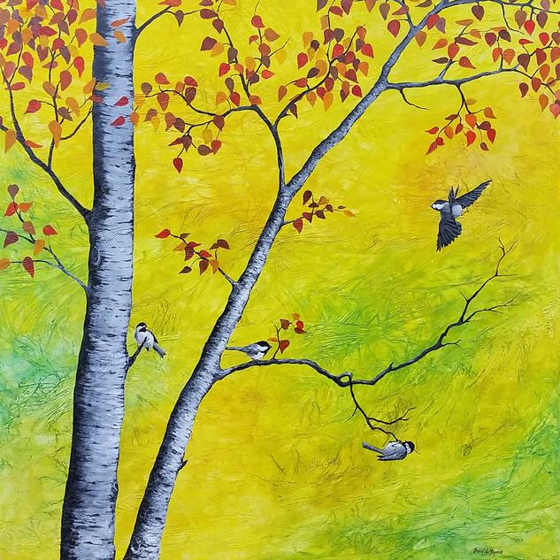 Chickadee Fall
