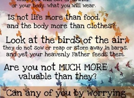 Worry Kills Creativity