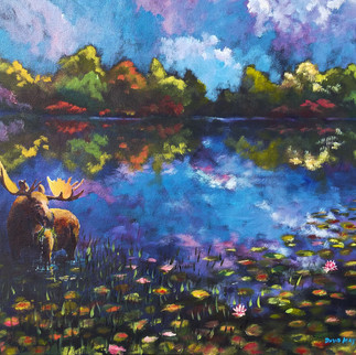 Alaska Moose Time