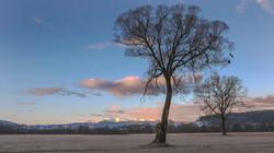Blick Seetaler Alpen-375A2952