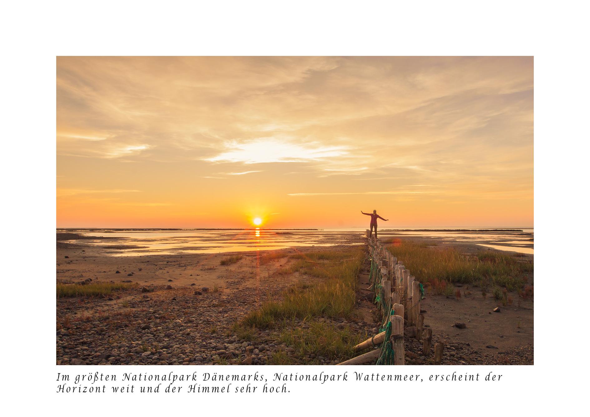 Nationalpark Wattenmeer_Marianne