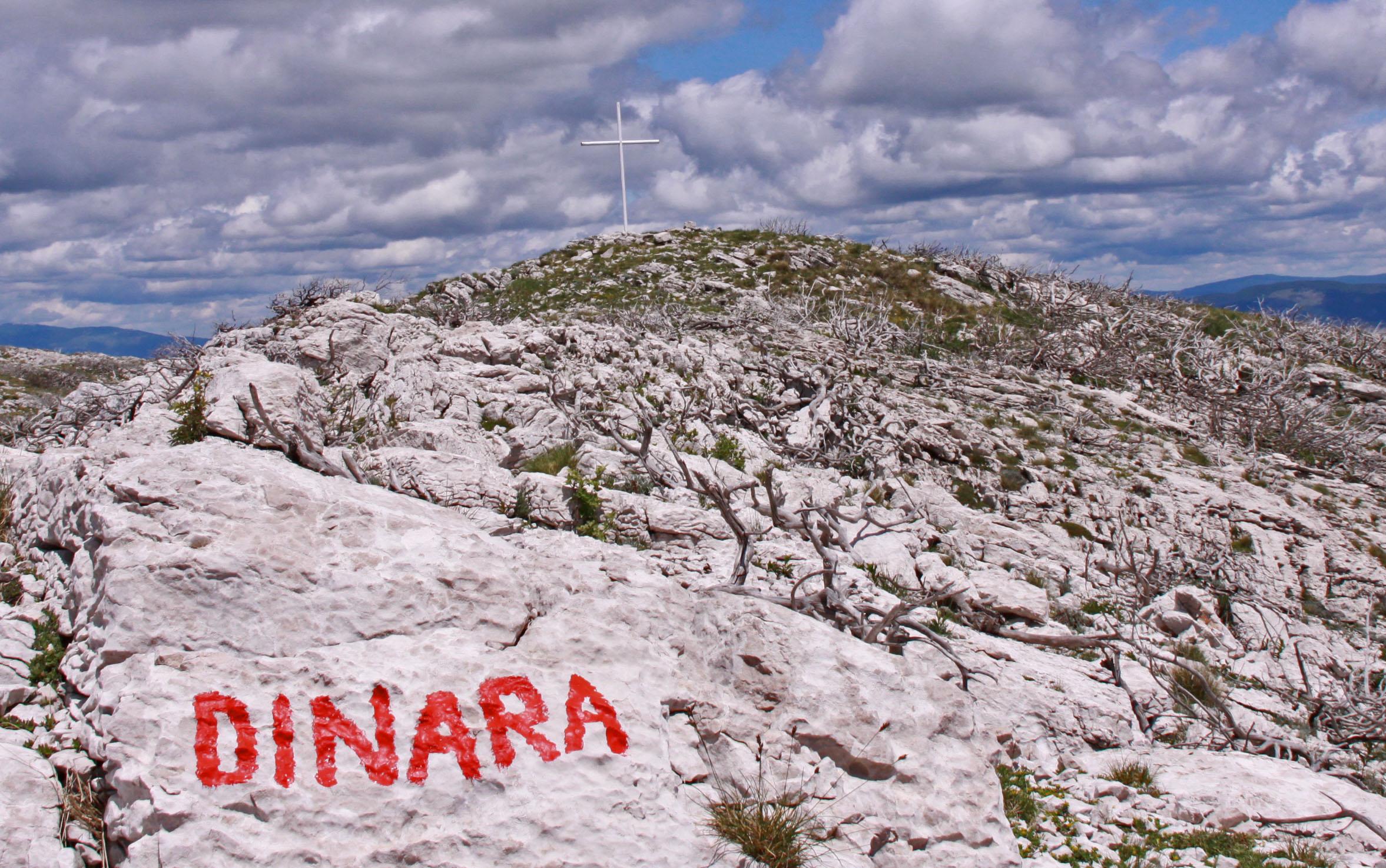 Dinara Gipfl 2742