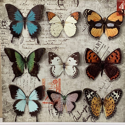 Tin Butterfly Montage
