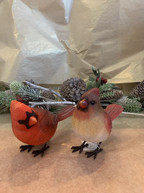 Male and Female Cardinal set