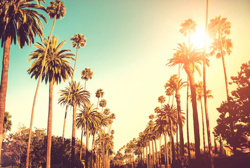 Luxury Properties California