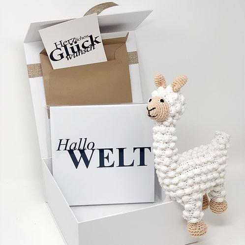 babyBOX 5 / Hallo Welt!