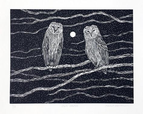 Owls Watch