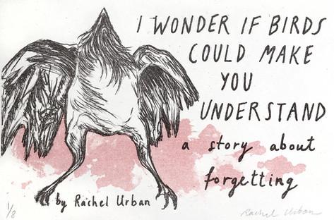 I Wonder if Birds Could Make You Understand