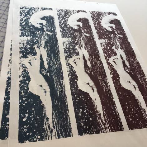 Screenprints for accordion book before being cut