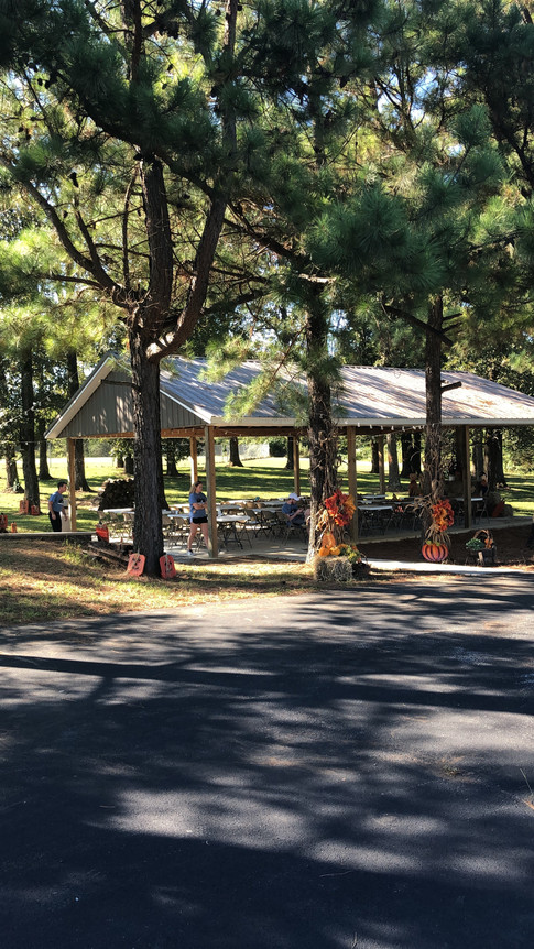 Our beautiful pavilion before Family Fest