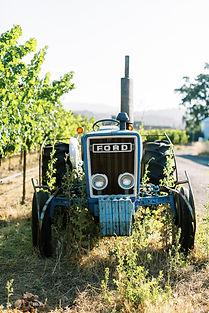 WheelerFarms-Tractor-SarahAnneRisk.jpg