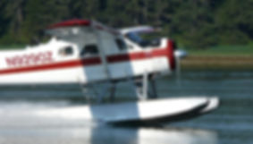 southeast alaska float plane prince of wales island alaska