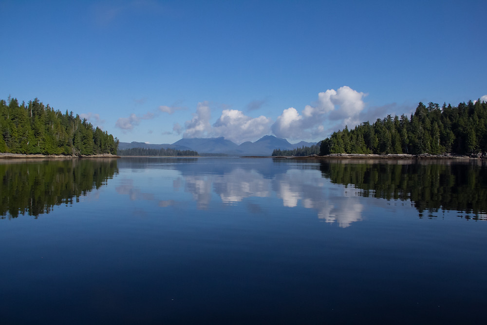 prince of wales island alaska, southeast alaska, ocean, sky, blue, islands, forested, serene, peaceful