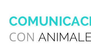 Artículo de Comunicación con Animales en Cofenat