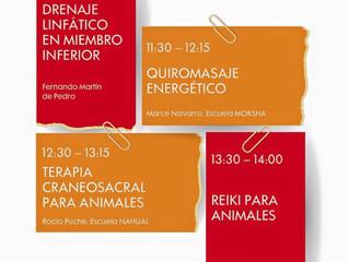 CHARLA SOBRE REIKI PARA ANIMALES en el V Congreso internacional de Terapias Naturales en IFEMA