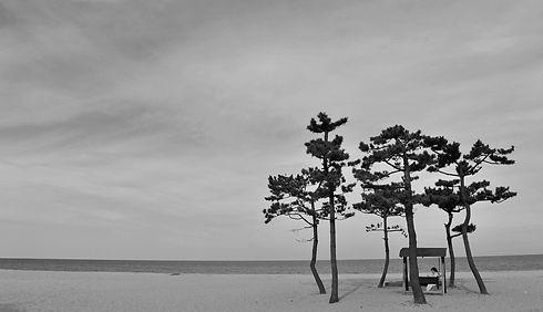 beach-4586064_1920.jpg