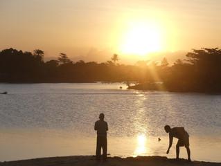 Journal de bord - Team Afrique - Semaine 19