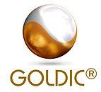 20160103_Goldic_Logo.jpg