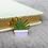 Thumbnail: California Botanical Selection - Haworthia attenuata, Succulent Enamel Pin