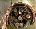 Mini-Wildbienenhotel.PNG