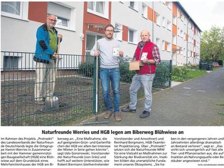Naturfreunde Werries und HGB legen am Biberweg Blühwiese an