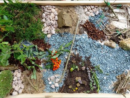 Naturgartenplanung